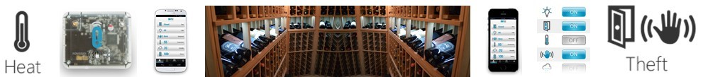 Protect Your Wine Collection Even When You Are Not There