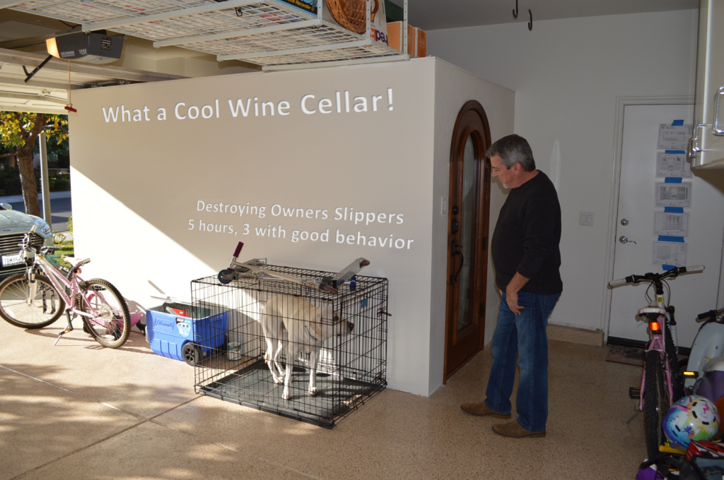 What a Cool Wine Cellar