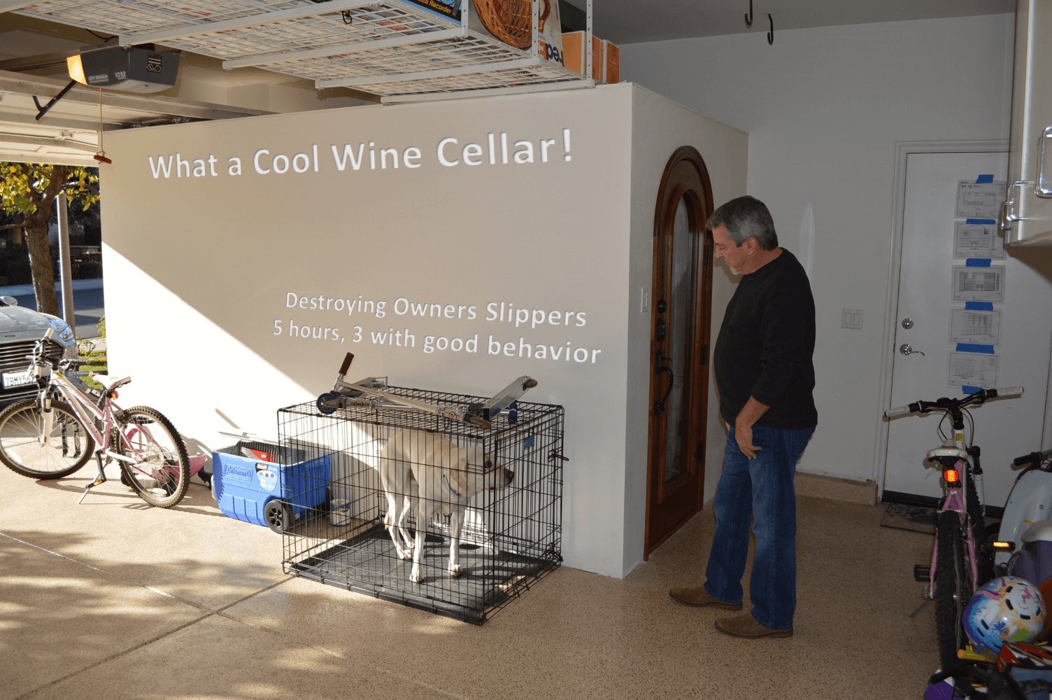 what a cool wine cellar awesome portable wine cellar